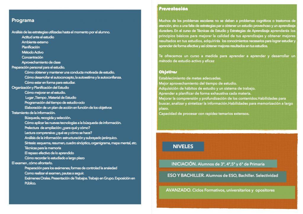 CARA B DIPTICO TECNICAS DE ESTUDIO